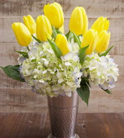 Royale Tulips Yellow