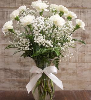 Carnation Fields White