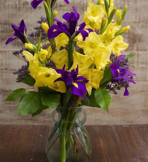 Gladiolus Medium