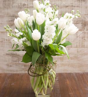 Tulips Grande
