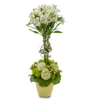 Order UNIQUE Flowers to Send SAME DAY Delivery with Roses and more to the Greater Grand Rapids Area with Sunnyslope Floral
