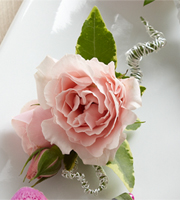 The FTD® Pink Spray Rose Boutonniere