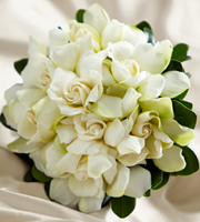 The FTD® Champagne Dreams™ Bouquet