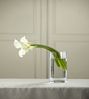 The FTD® White Calla Bouquet