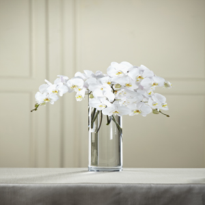 The FTD® White Phalaenopsis Bouquet
