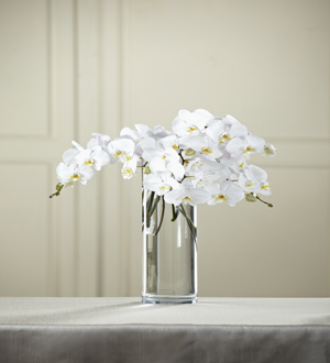 The FTD® White Phalaenopsis Bouquet