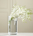 The FTD® White Dendrobium Bouquet