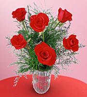Demi-douzaine de roses